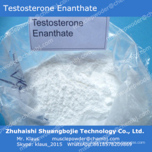 Bulking Cycle Steroid Powder Enanthate de testostérone pour contraceptifs masculins 315-37-7