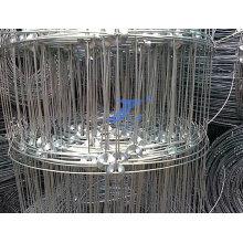 Rede de arame de cerca de pastagem (fábrica)