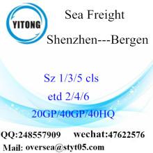Consolidation du port de Shenzhen à Bergen