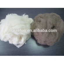 Pure dehaired Raccoon hair white brown color for Korea market