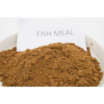 Animal Feed Fish Meal