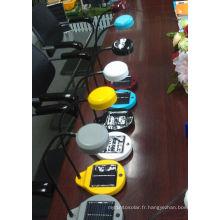 Lampe de lecture LED solaire avec batterie amovible (SDL-3025)