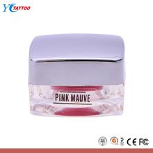 Encre de tatouage couleur pour le tatouage à lèvre complet et le pigment de couleur cosmétique