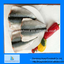 fresh frozen pacific mackerel fillet