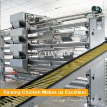 Poulet de conception de Tianrui utilisé Système d'alimentation automatique de volaille