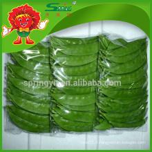 Haricots verts saineux de haute qualité en grains de neige en provenance de Chine