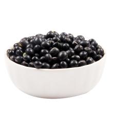 Fresh High Quality Black Kidney Beans