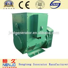 NENJO marca 6.5KW / 8KVA generador de dínamo precio
