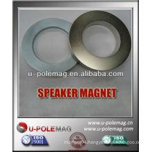 Magnets Neodymium Ring for Speaker