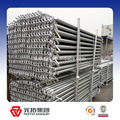 Reliable Manufacturer for ringlock scaffolding system Hot dipped galvanized