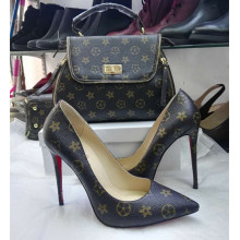 Stylish and Elegant Ladies Shoes with Matching Bags (G-1)