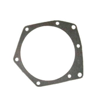 VG1500060108 61500060108 13053681 13051715 Pompa Air Gasket