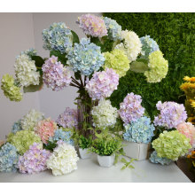 Many styles decoration resin flowers