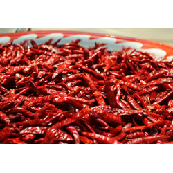 Dried hot chilli without stem import export red chilli