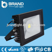 IP67 30W RGBW LED Floodlight with remote control CE RoHS Approval