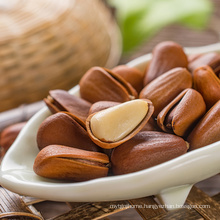 factory wholesale pine nuts with good prices,china pine nut kernels