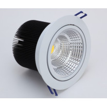 20W COB Warm White 220V LED Ceiling Lamp