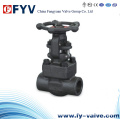 Forged Steel A105 Gate Valves