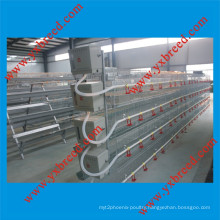 Automatic Poultry Layer Broiler Chicken Cage (H4L80)