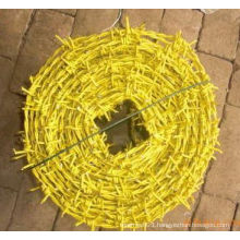High Quality Plastic Spraying Razor Barbed Wire for Sale