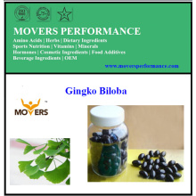 Gingko Biloba/ Vegetable Capsules /No Preservatives