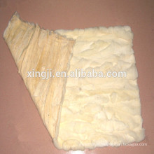 Rex coelho barriga pele placa natural cor branca