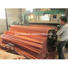 0.3mm Rotary Cut Wood Veneer for Making Plywood