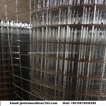 Welded Wire Mesh Galvanized Welded Wire Mesh Roll