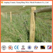 Eléctrico galvanizado o caliente DIP galvanizado alambre de púas (XM-BW)