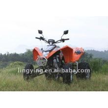 300cc EEC Quad Bike/ATV (Modell)