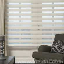 New Design Zebra Roller Shade