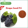 Grape Seed E...