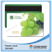 Plastic Magnetic Stripe Card Hico & Loco (ZD221)