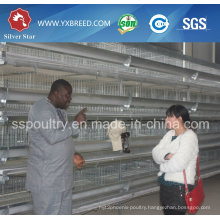 Farm Battery Cage