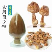 Agaricus blazei polysaccharide/ Agaricus blazei Extract