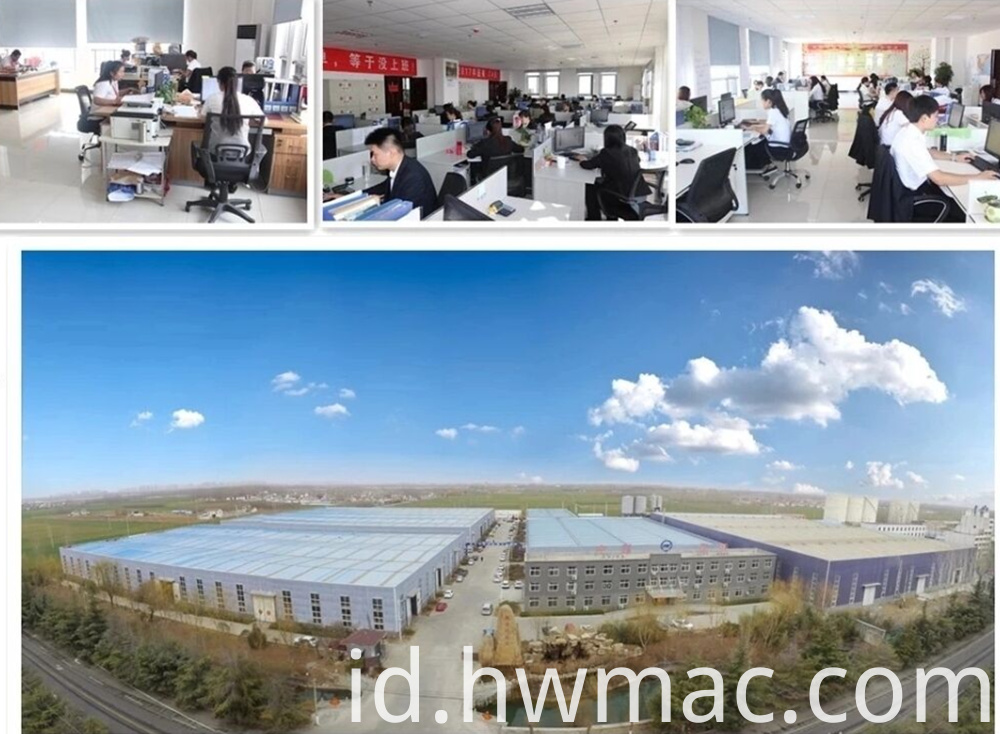Shandong Hengwang Group Co Ltd