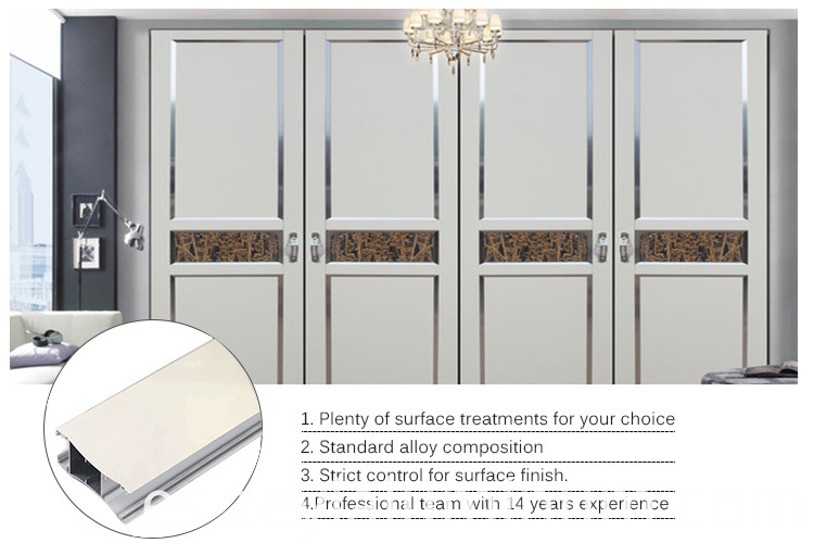 Swing Cabinet Door Aluminum Profile