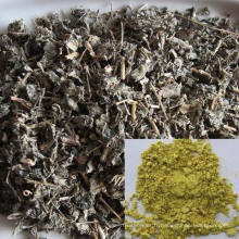 Meilleures ventes Produits Dihydromyricetin Powder, Chinese Supplier Dihydromyricetin, Vine Tea Extract