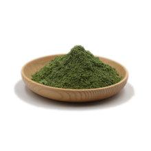Organic Barley Grass Juice Powder Gluten Free