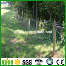 Abastecimiento de fábrica Cerca / campo del prado Vaso de alambre tejido al por mayor Valla del ganado / cerca del campo del ganado