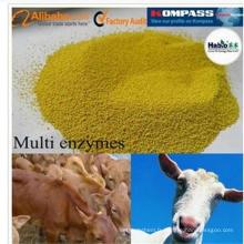 Une meilleure enzyme multinationale spécialisée de ruminant d'alimentation de meilleure qualité de Thermolstability pendant des processus de granulation