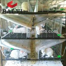 Cage à lapins commerciale en métal dans la ferme du Kenya