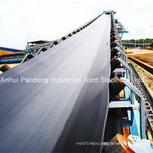 Conveyor System/Belt Conveyor/Tear-Resistant Conveyor Belt