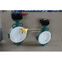 Full PTFE Lining Wafer Type Butterfly Valve with Ce ISO Wras Approved (CBF04-TA01)