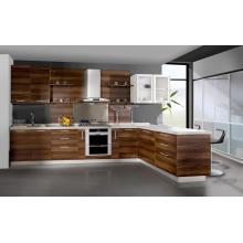 North America Project Gabinetes de cocina modernos