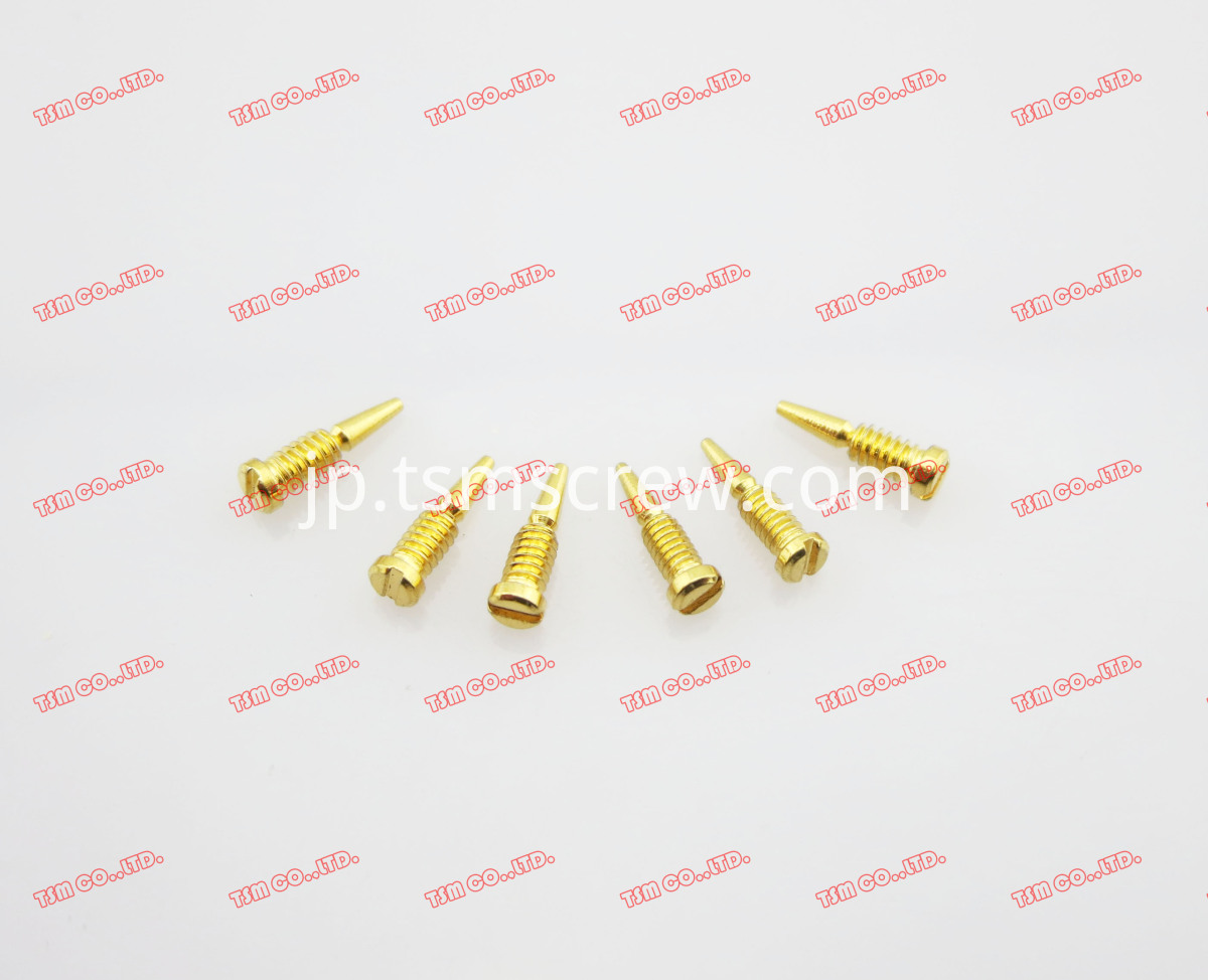TSM GOLD FULL THREAD SELF ALIGN SCREW-1