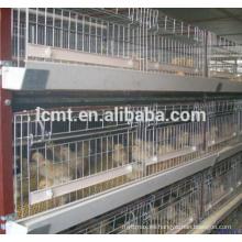 control de aves de corral arrojar equipos completos para jaula de pollo