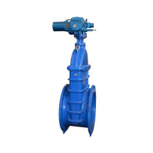 Electric cast iron gate valve
