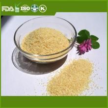 First grade dehydrated dried garlic powder