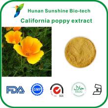Gute Löslichkeit in Wasser Kalifornischer Mohn Eschscholzia californica Extrakt Pulver